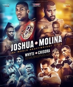 Anthony Joshua vs. Eric Molina HD Blu-Ray